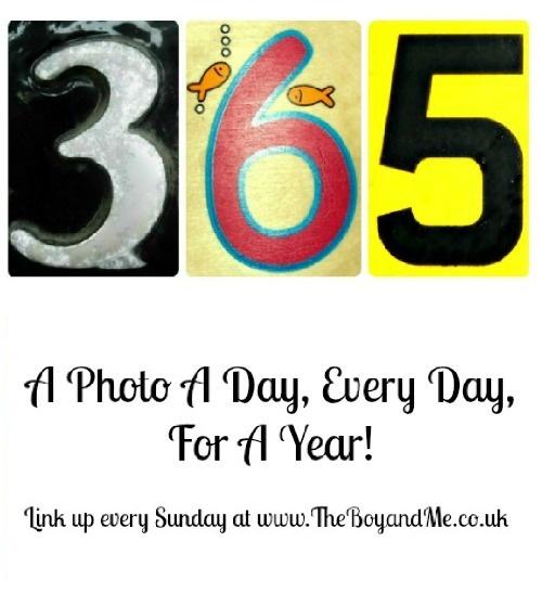 365 image